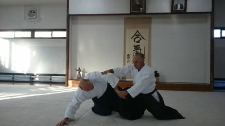 a-c-aikido-shogun