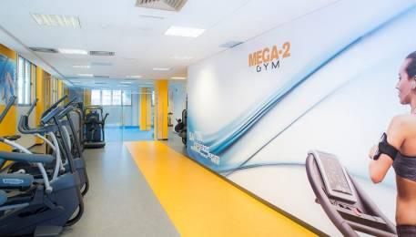 mega-2-gym-1