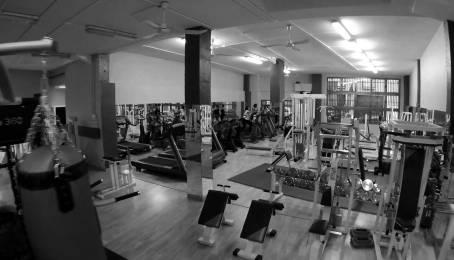 platea-gym